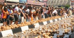 thaipusam breaking coconuts